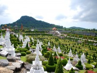 A tour of the most scenic botanic gardens of Thailand